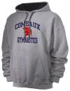 Comeaux High SchoolGymnastics