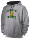 Centreville High SchoolHockey