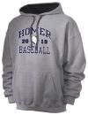 Homer High SchoolBaseball