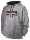Big Spring High SchoolGymnastics