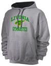 Livonia High SchoolGymnastics