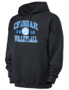 Chugiak High SchoolVolleyball
