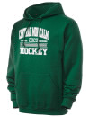 Central Montcalm High SchoolHockey