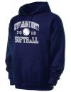 Effingham County High SchoolSoftball