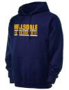 Hillsdale High SchoolCheerleading