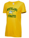 Northland High SchoolGymnastics