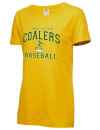 Coal City High SchoolBaseball