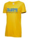 Chanute High SchoolGymnastics