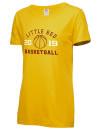 Ithaca High SchoolBasketball