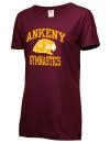 Ankeny High SchoolGymnastics