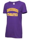 Briggs High SchoolGymnastics