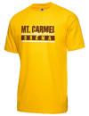 Mount Carmel High SchoolDrama