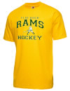 Flat Rock High SchoolHockey