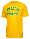 Falcon High SchoolGymnastics