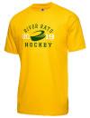 Huron High SchoolHockey
