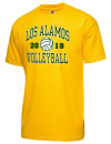 Los Alamos High SchoolVolleyball