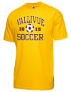 Vallivue High SchoolSoccer
