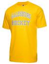 Galesburg High SchoolHockey