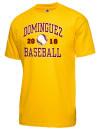 Dominguez High SchoolBaseball