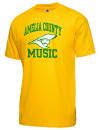 Amelia County High SchoolMusic