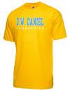 D W Daniel High SchoolGymnastics