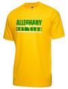 Alleghany High SchoolArt Club