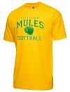 Leilehua High SchoolSoftball