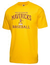 Mccutcheon High SchoolBaseball