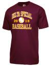 Delta High SchoolBaseball