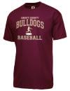 Liberty County High SchoolBaseball