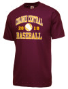 Colonie Central High SchoolBaseball