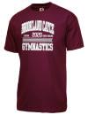 Brookland Cayce High SchoolGymnastics