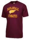 Harlandale High SchoolGymnastics