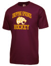 Dripping Springs High SchoolHockey
