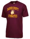 Barren County High SchoolGymnastics