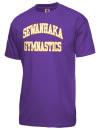 Sewanhaka High SchoolGymnastics