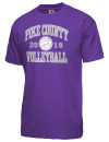 Pike County High SchoolVolleyball