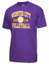 Webster City High SchoolVolleyball