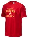 Clarke Central High SchoolHockey
