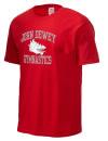 John Dewey High SchoolGymnastics