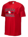 Halls High SchoolBaseball
