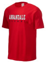 Annandale High School
