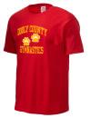 Dooly County High SchoolGymnastics