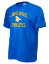 James Bowie High SchoolGymnastics