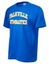 Falkville High SchoolGymnastics
