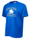 Amador High SchoolGymnastics