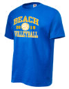 Beach High SchoolVolleyball