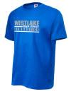 Westlake High SchoolGymnastics