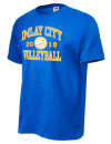 Imlay City High SchoolVolleyball
