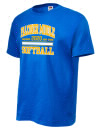 Falconer High SchoolSoftball